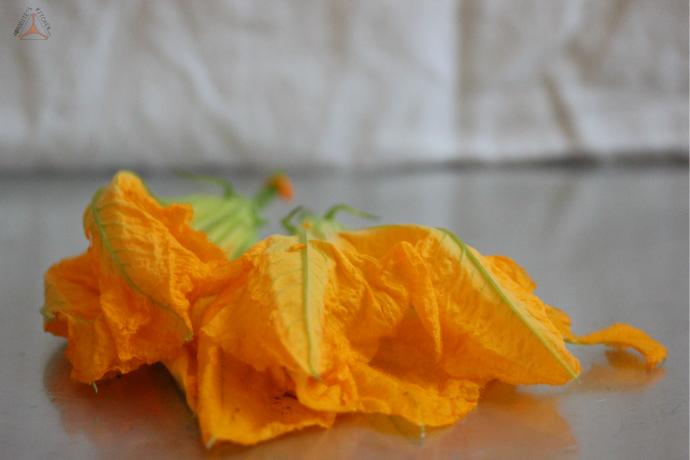 flower1mb