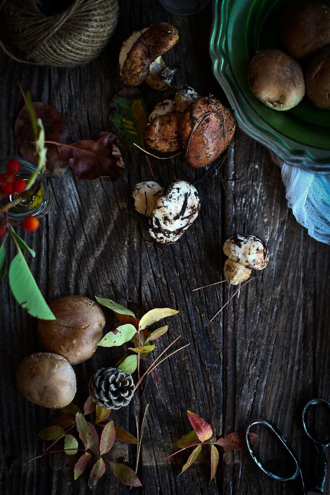 lasgane edited (mushroom, flour, mosphila)-2282