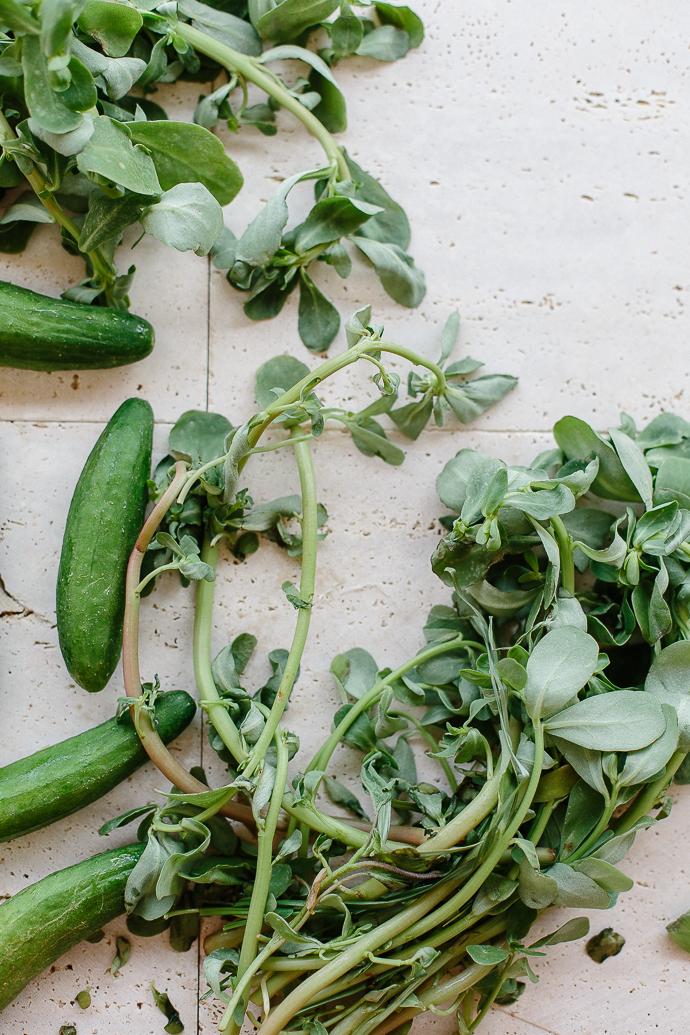 Listeritha Salad-6497