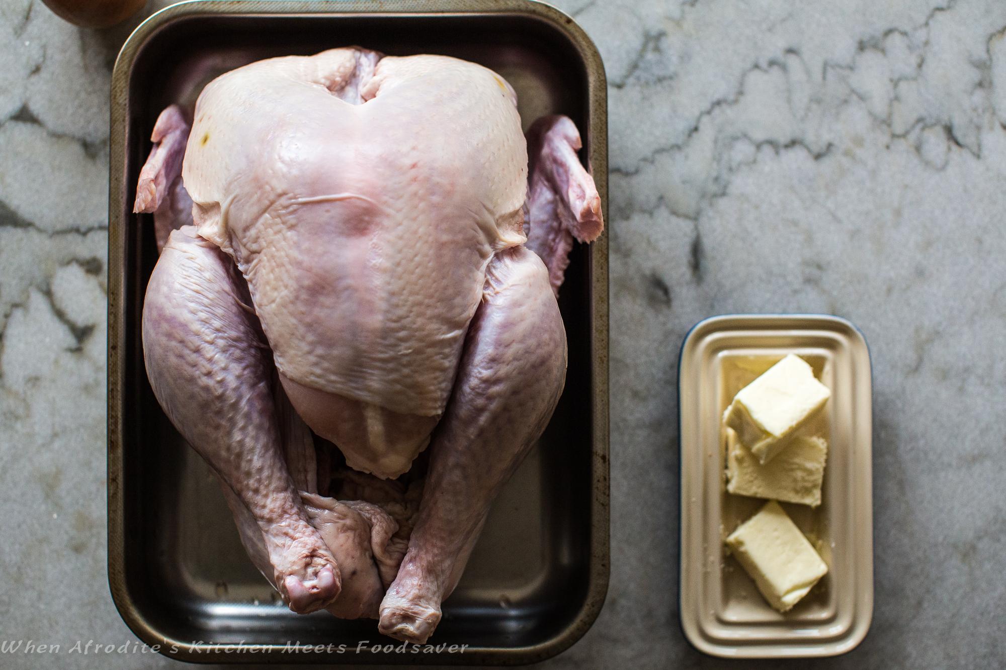 Perfect Turkey-9302