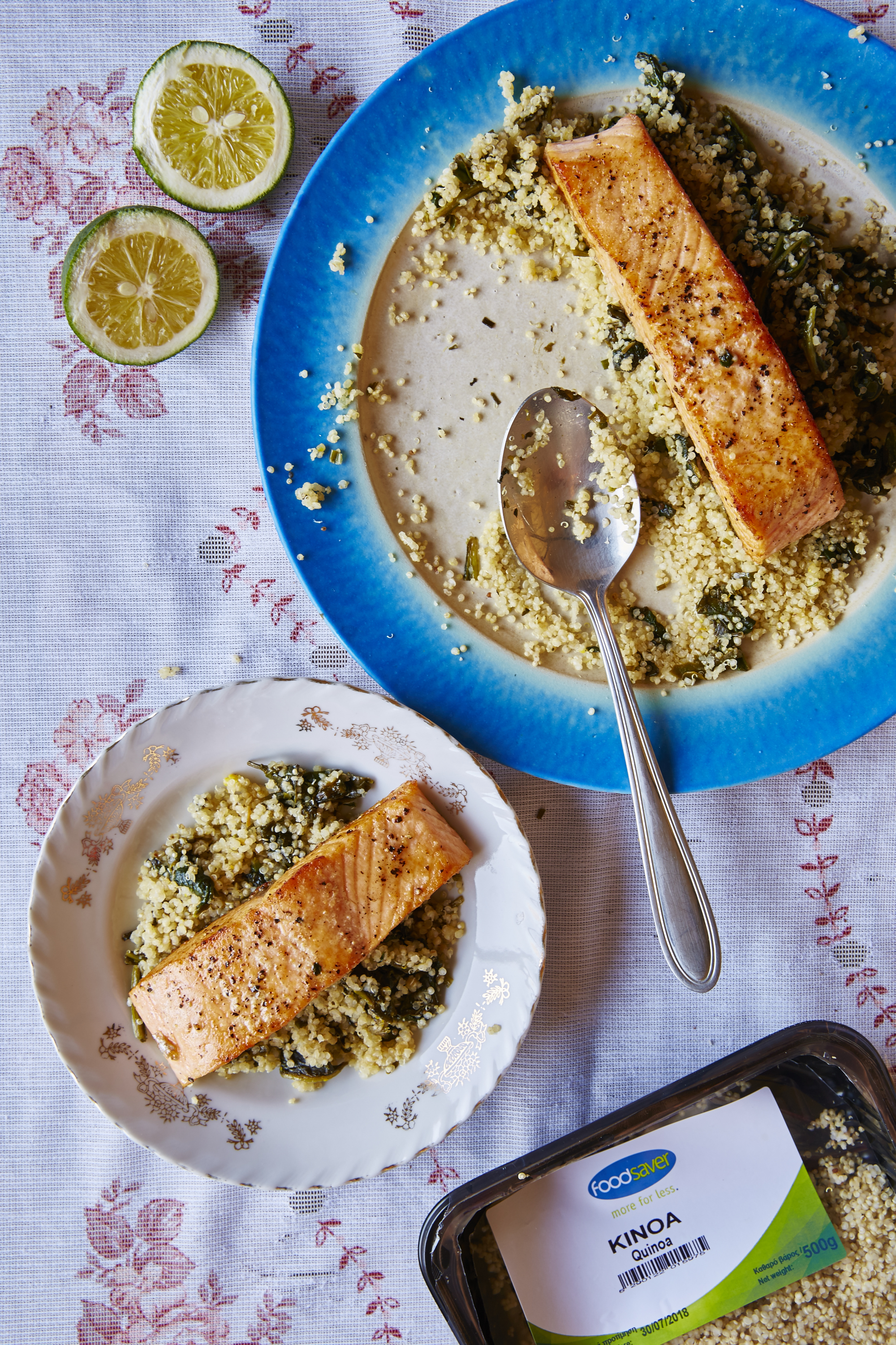 Foodsaver September Salmon Foodsaver - September - Salmon1610